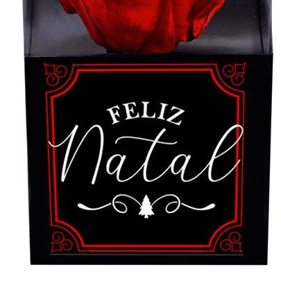 Rosa Encantada Vermelha Feliz Natal