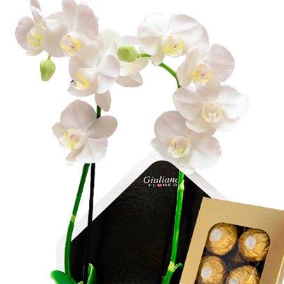 Orquidea no Envelope Feliz Páscoa