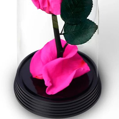 A Bela Rosa Encantada Mãe Te Amo