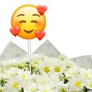 Mini Margaridinhas Brancas com Emoji Coraçãozinho