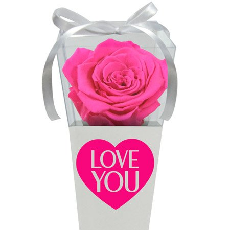 Cone Branco de Rosa Encantada Pink Love You