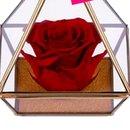 Pirâmide de Rosa Encantada Vermelha Love You
