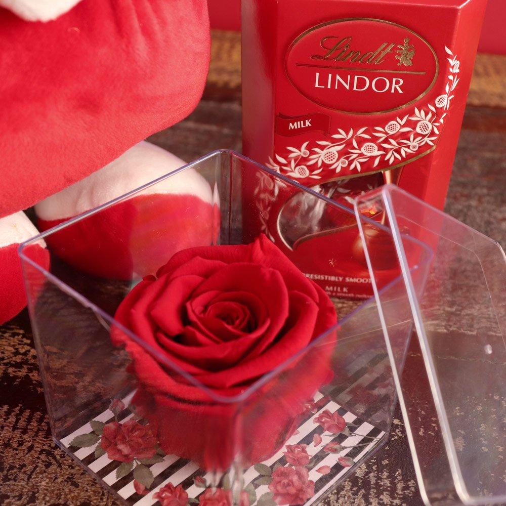 Rosa Encantada no Acrílico com Lindt e Ursinho Carinhoso