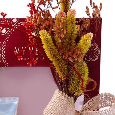 Kit Lavanda Vyvedas III e Flores Secas