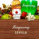 Kit Tanqueray Flor de Sevilla
