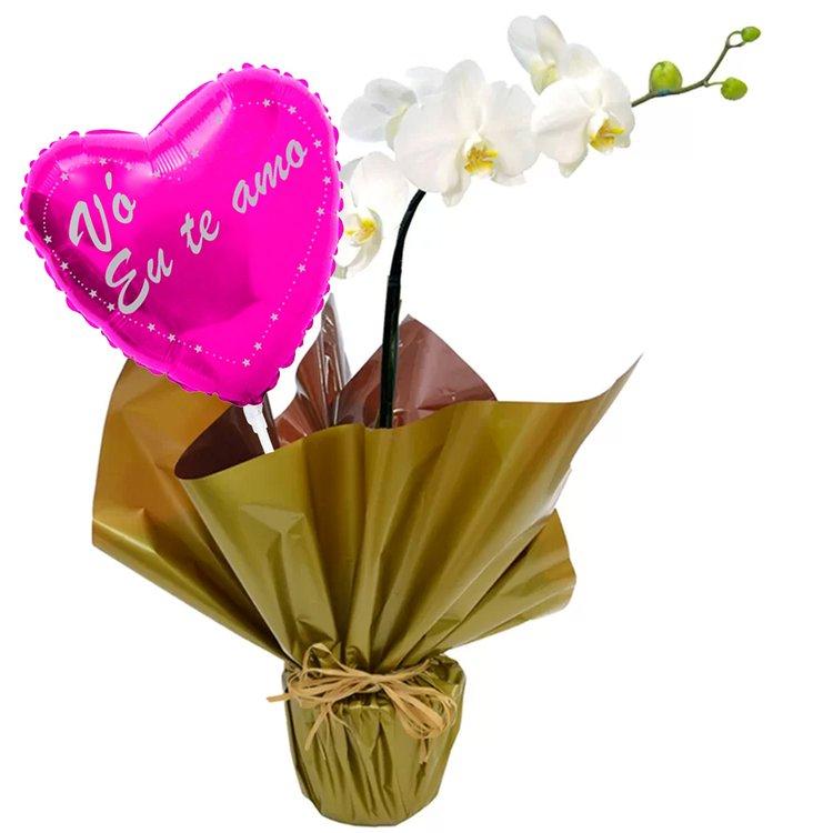 Orquidea Phalaenopsis Branca e Balão Vó Eu Te Amo Pink