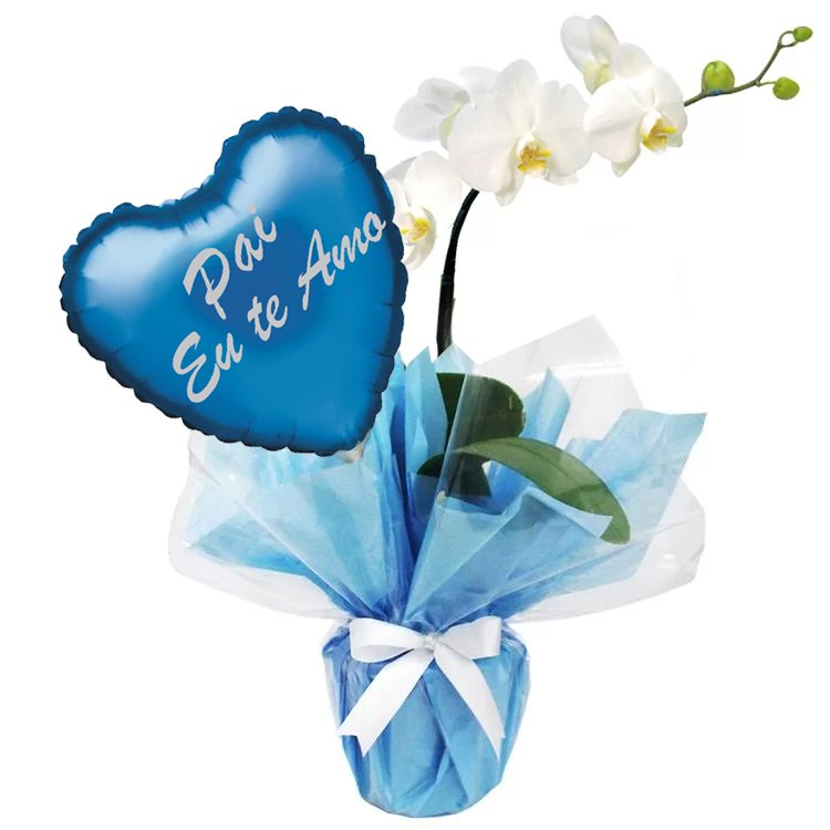 Orquidea Phalaenopsis Branca e Balão Pai Eu Te Amo Azul