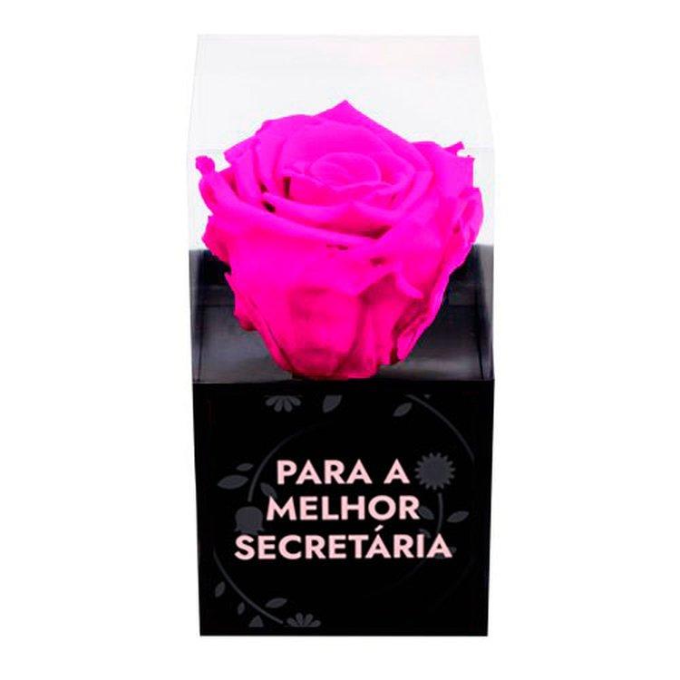 Rosa Encantada Pink Para a Melhor Secretária