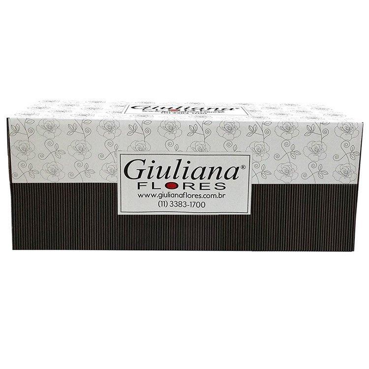 Caixa de Viagem - Nova GF