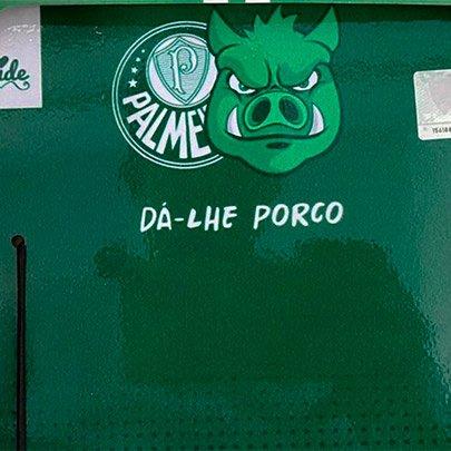 Quadro Palmeiras Sude