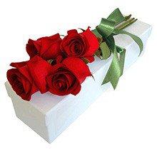 Paixão de Rosas Vermelhas na Caixa