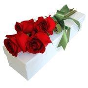 Buquê Paixão com 4 Rosas na Caixa